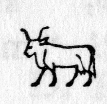 Hieroglyph tagged as: animal,cow,horns,quadruped