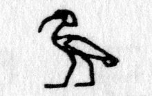 Hieroglyph tagged as: bird,crest,ibis