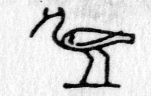 Hieroglyph tagged as: bird,ibis