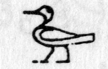 Hieroglyph tagged as: bird,duck