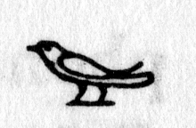 Hieroglyph tagged as: bird,sparrow