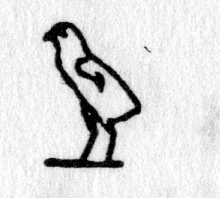Hieroglyph tagged as: bird,chick