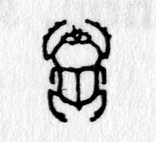 Hieroglyph tagged as: beetle,dung beetle,insect