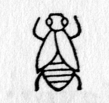 hieroglyph tagged as: fly, insect